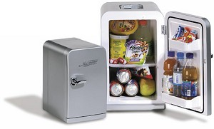 Delightful ... Portable DC Mini Fridge